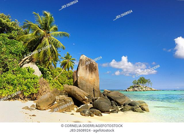 Anse Royale with palm trees and sculpted rocks, Mahe Island, Seychelles, Indian Ocean, Africa