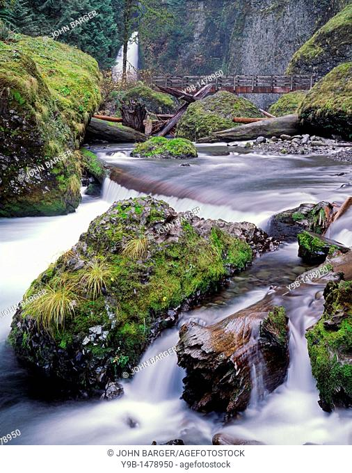 Tanner Falls and Tanner Creek in autumn, Columbia River Gorge National Scenic Area, northern Oregon, USA