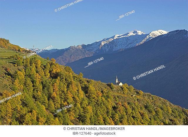 Autumn coloured landscape near village of Tanas, Vinschgau, South Tyrol, Italy