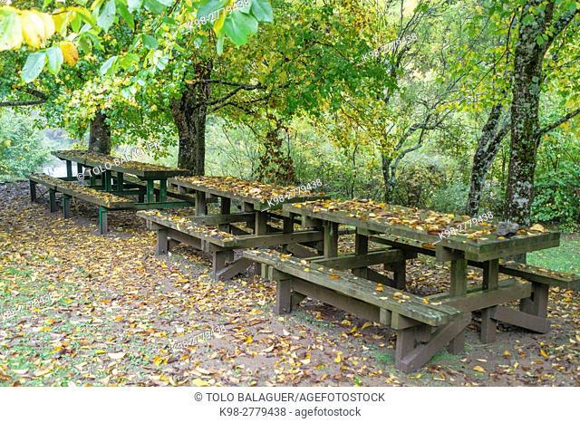 Picnic area, green corridor of the river Veral, western valleys, Pyrenean mountain range, province of Huesca, Aragon, Spain