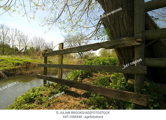 A cattle fence down to the river Cherwell in Oxfordshire