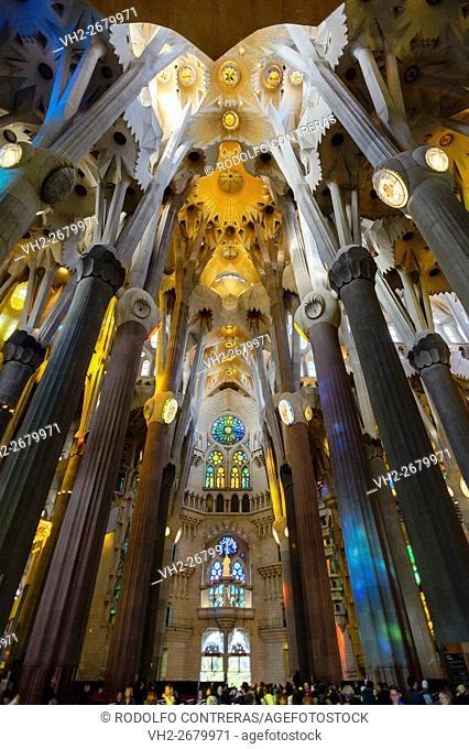 Interior of the Sagrada Familia, Barcelona