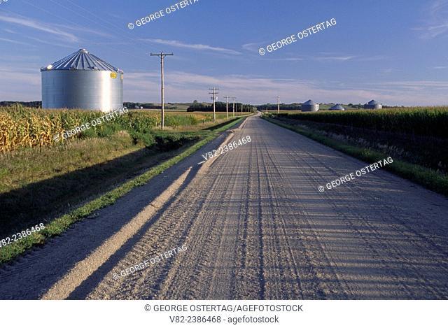 Farm road, Butler County, Nebraska