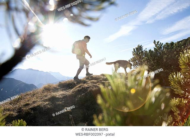 Austria, Tyrol, Unterberghorn, hiker with dog at sunrise