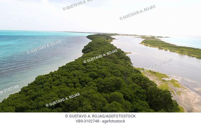 Aerial view Tropical beach of island Cayo Salt, Los Roques, Venezuela