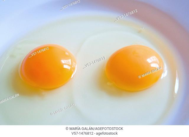 Two yolks in a dish