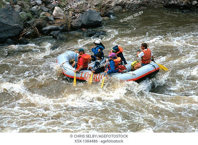 White Water Rafting on the Racecourse section of the Rio Grande River near Pilar, New Mexico, USA