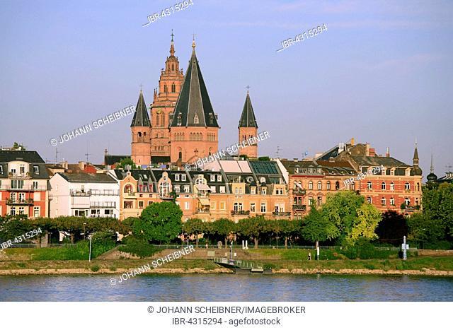 Waterfront and Mainz Cathedral, Mainz, Rhineland-Palatinate, Germany