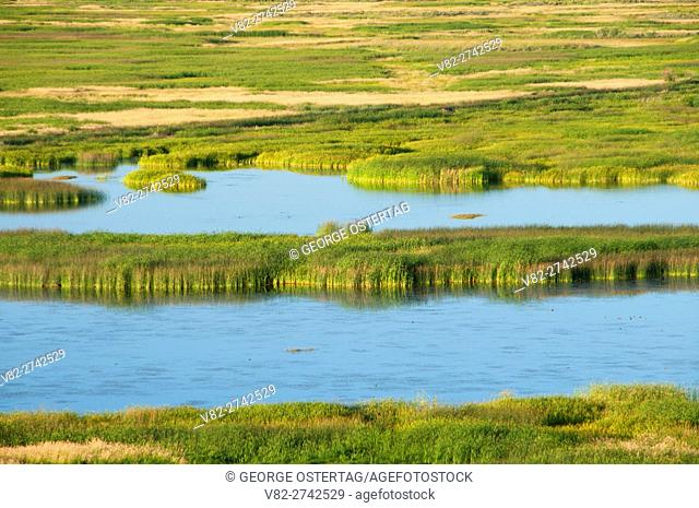 Buena Vista Pond, Malheur National Wildlife Refuge, High Desert Discovery Scenic Byway, Oregon
