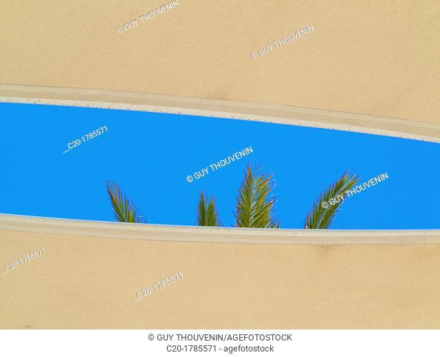 anti sun awning and palm tree, Tunisia