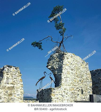 Reinsberg district of Scheibbs Lower Austria ruins of the castle Reinsberg stronghold rest of the walls with two cranes