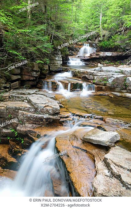 Bemis Brook Falls along Bemis Brook in Harts Location, New Hampshire USA during the spring months. This area is part of Crawford Notch State Park