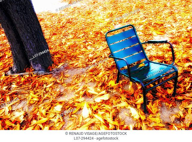 Blue chair on yellow leaves in autumn. Paris. France