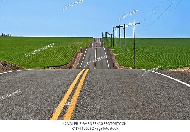This rural photo is full on conceptual ideas, it's s long stretch of empty highway with dips, ups and downs running through green farmland and clear blue sky...