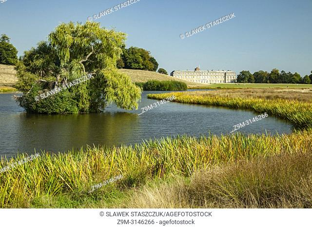 Summer afternoon in Petworth Park, West Sussex, England