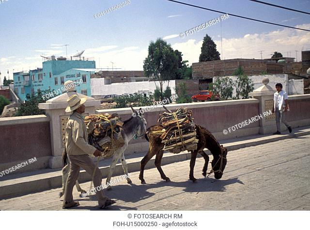 Mexico, Dolores Hidalgo, donkey, A man walks across a bridge with his donkeys carrying goods to Dolores Hidalgo in the state of Guanajuato