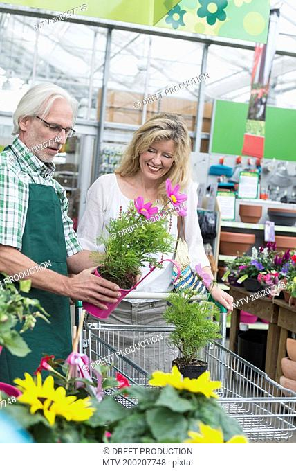 Shop assistant helping a customer to choosing plant in garden centre, Augsburg, Bavaria, Germany