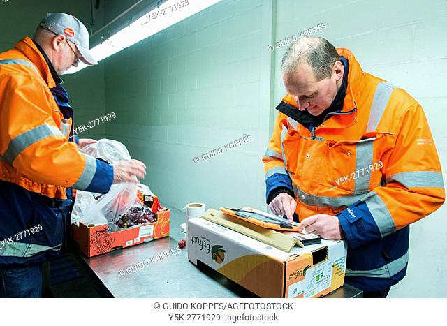 Rotterdam, Netherlands. Two men checking a just arrived shipload of grapes, inside a cooled harbour warehouse