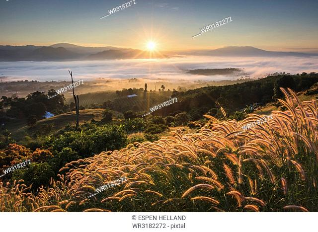 Sunrise from Yun Lai Viewpoint, Thailand, Southeast Asia, Asia