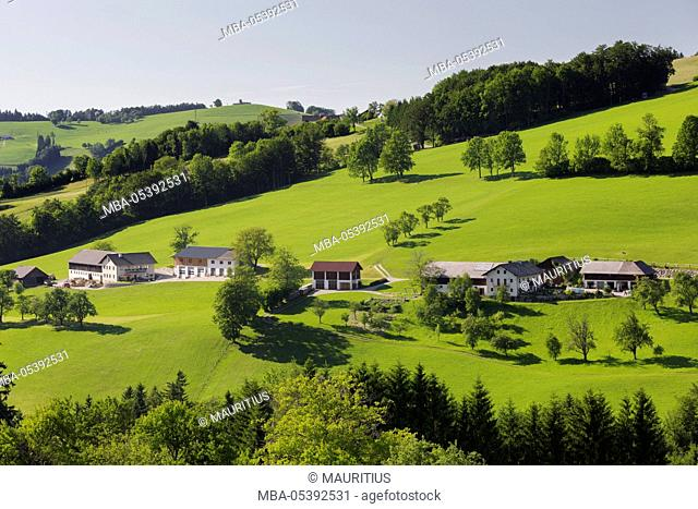 Foothills of the Alps, near Waidhofen in the Ybbs, Lower Austria, Austria