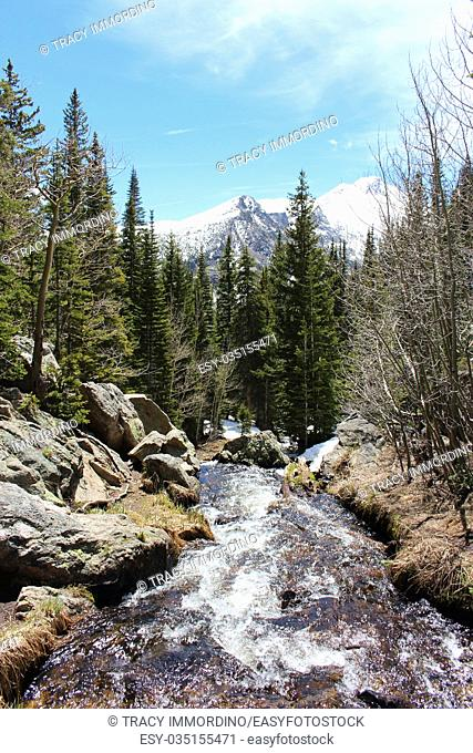 A rushing stream flowing through a rocky channel on Bear Trail in Rocky Mountain National Park, Estes Park, Colorado, USA