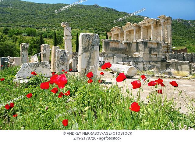 Antique city of Ephesus, poppy flowers in front, Turkey, Western Asia