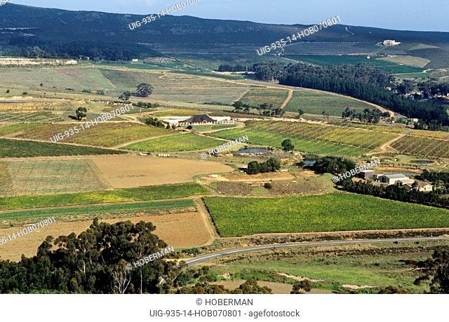 Bouchard Finlayson Wine Estate, Hemel & Aarde Valley, Hermanus, Western Cape