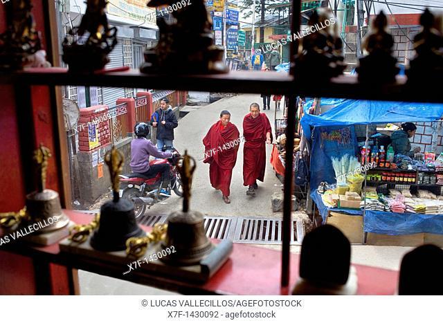 Post office Rd from Tibetan handicrafts Centre,McLeod Ganj, Dharamsala, Himachal Pradesh state, India, Asia