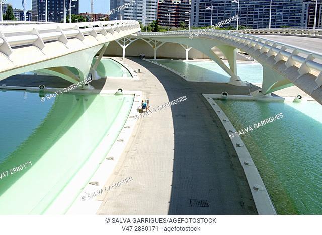 Monteolivete bridge, City of Arts and Sciences, Valencia, Spain, Europe