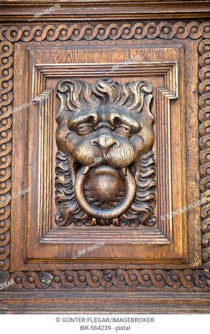 Lion's head decoration wooden door