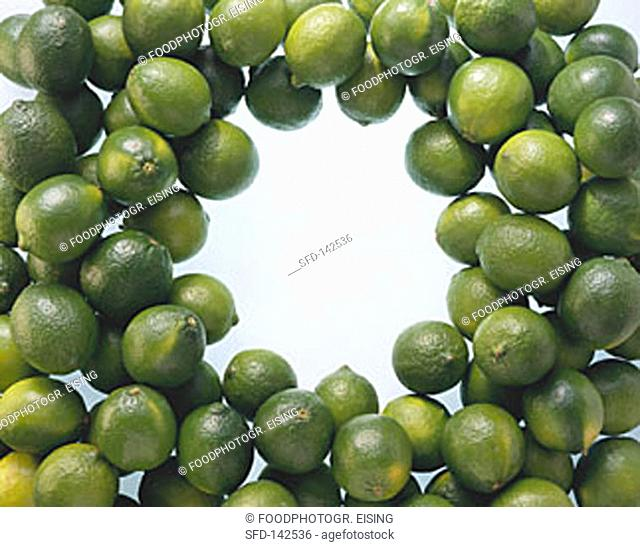 Many Limes in the Shape of a Wreath