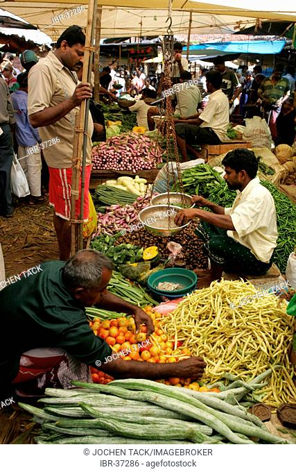 LKA, Sri Lanka, Galle : Fresh market, daily, fruits, vegetables, herbs, are sold by the local farmers