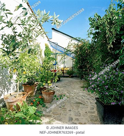A garden with a greenhouse, Sweden