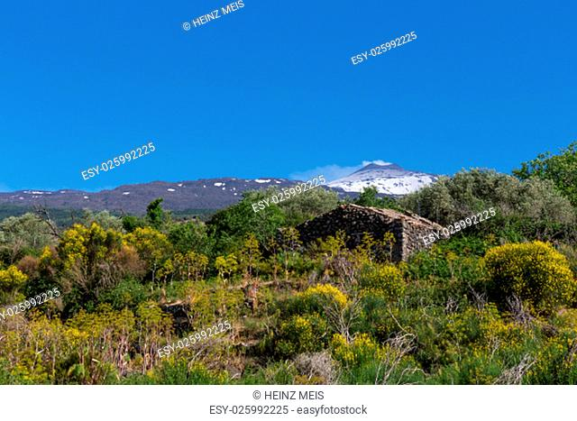 the aetna volcano in sicily smokes against a blue sky