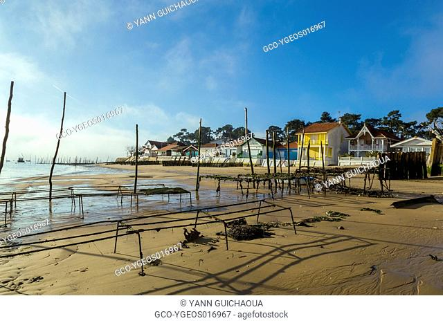 Oyster farming,Les Jacquets, Lege Cap Ferret, Bay of Arcachon, Gironde, France