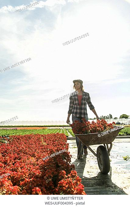 Woman in nursery pushing wheelbarrow with flowers
