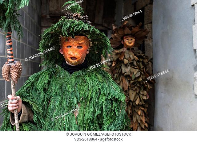 Many of the costumes of the participants in the carnival Vijanera are made from natural elements, branches, leaves, wood,