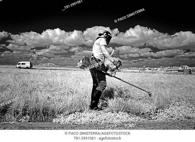 farmer mowing in the field, Valencia, Spain