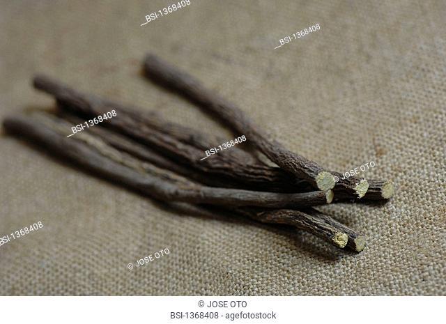 LICORICE Licorice stick Glycyrrhiza glabra