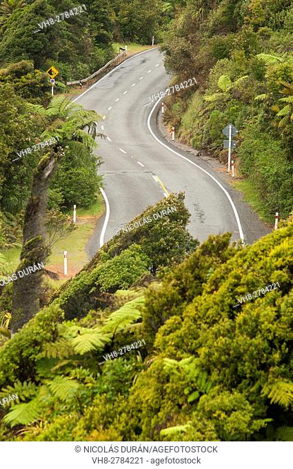 Road, West Coast, South Island, New Zealand