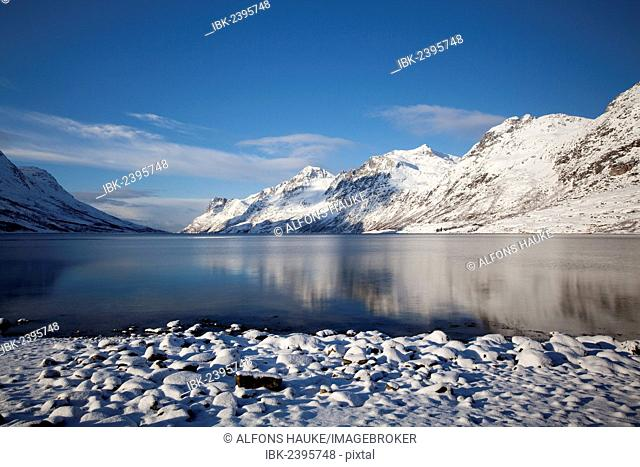 Ersfjord in winter, Tromso, Norway, Europe
