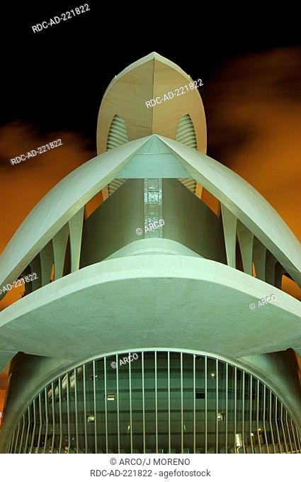 Opera Palau de les Arts Reina Sofia, architect Santiago Calatrava, City of Arts and Sciences, Valencia, Spain