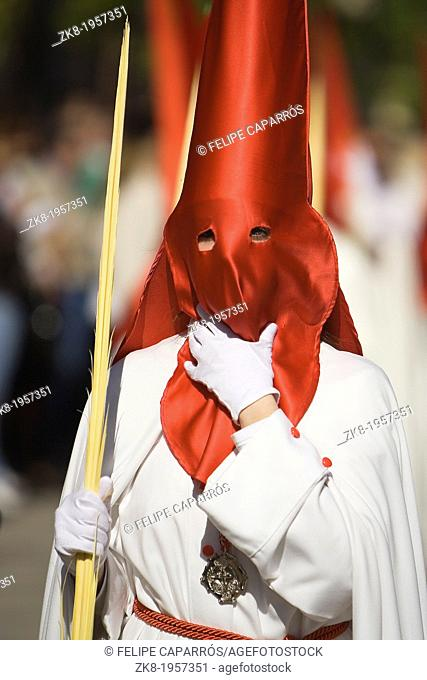 Detail penitent holding a palm during Holy Week, Spain