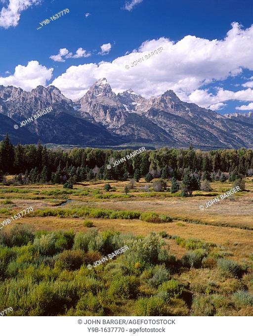 Teton Range rises above wetland area near Snake River, from Blacktail Ponds Overlook, Grand Teton National Park, Wyoming, USA