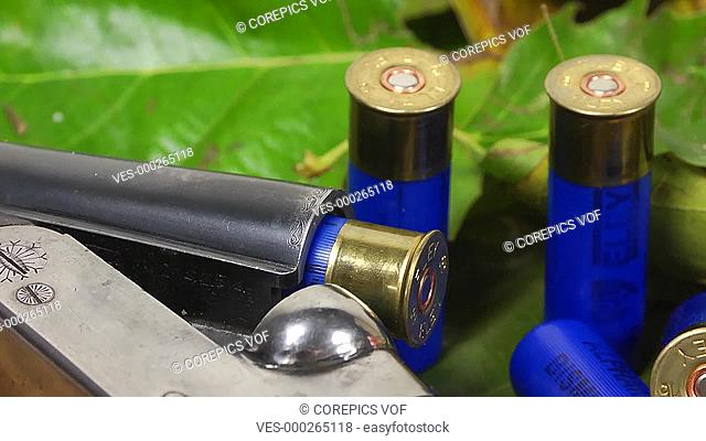 Shotgun and shells on a background of leafs, zooming out