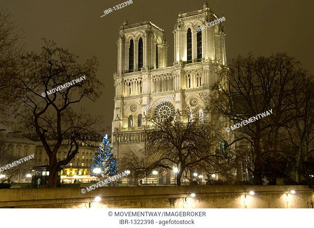 Christmas tree in front of Notre-Dame Cathedral at night, Paris, France, Europe