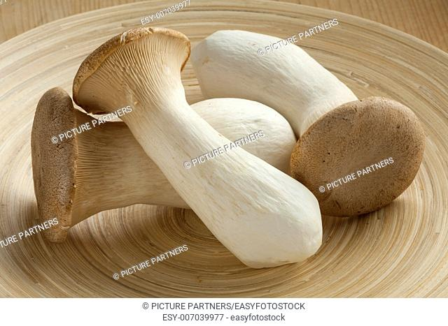Fresh raw king oyster mushrooms