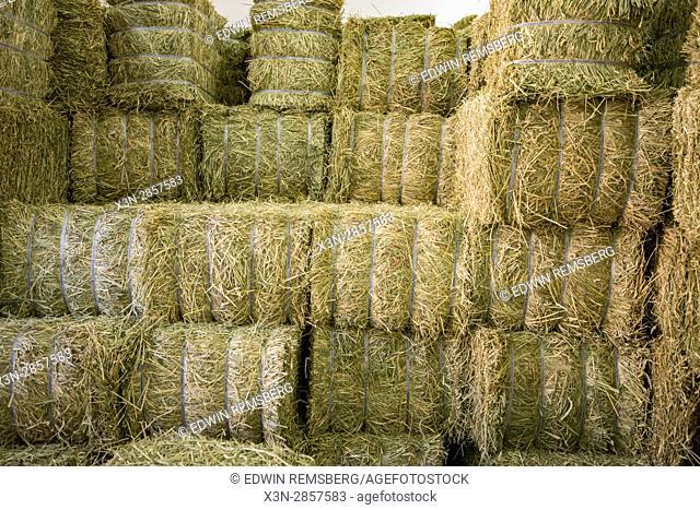 United Arab Emirates - Bales of hay in Dubai