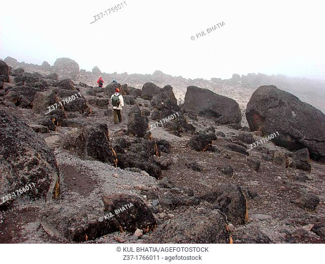 Hiker in Volcanic field, Shira Plateau, Machame Route, Mt  Kilimanjaro, Kilimanjaro National Park, Tanzania