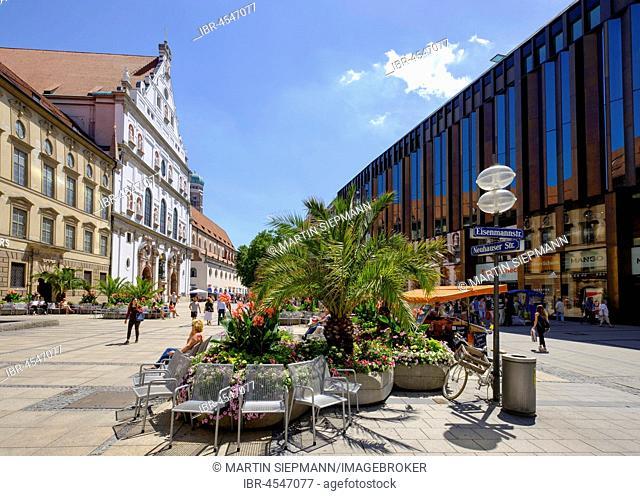 Palm trees in pedestrian zone, Michaelskirche, Neuhauser Strasse, old town, Munich, Upper Bavaria, Bavaria, Germany